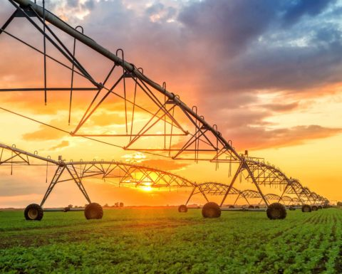 Image for Benton County Irrigation Scheduler