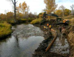 Image for Story Mill Community Park Stream Restoration