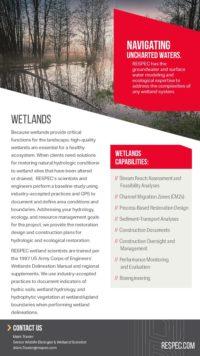 Flyer image for Wetlands