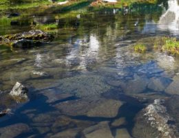 Image for Lower Gallatin Watershed Restoration Plan