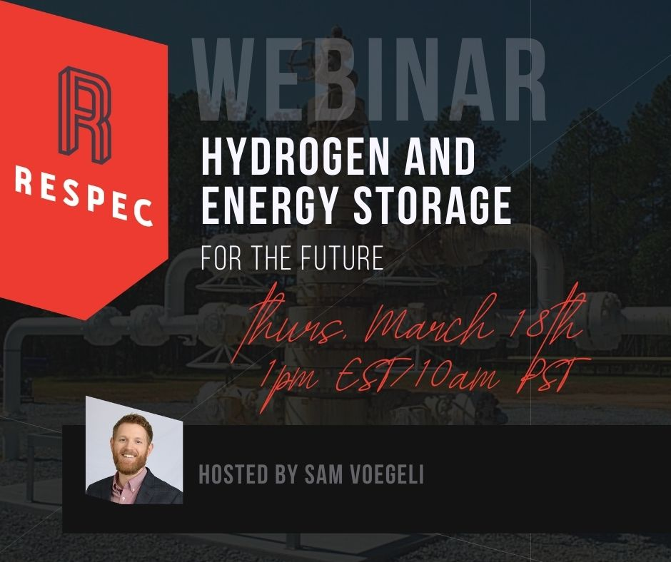 Hydrogen and Energy Storage for the Future